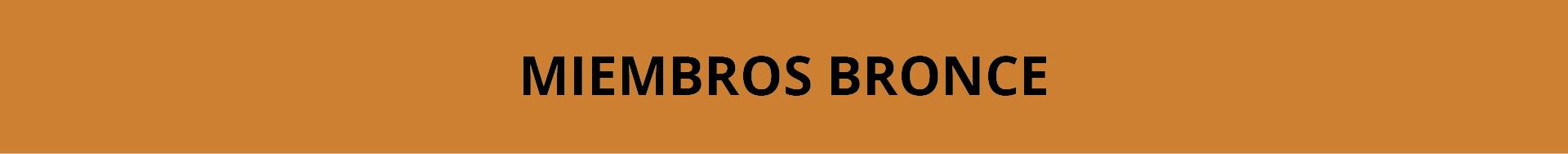 MIEMBROS BRONCE-01